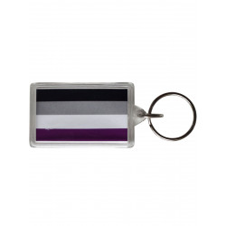 Asexual Flag Key Ring