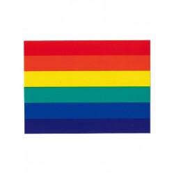 Rainbow Pride Aufkleber / Sticker 5,0 x 7,6cm / 2 x 3 inch (T1042)