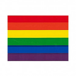 Rainbow Aufkleber / Sticker 9,5 x 12,7cm / 3.5 x 5 inch
