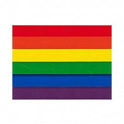 Rainbow Pride Aufkleber / Sticker 9,5 x 12,7cm / 3.5 x 5 inch (T1044)