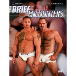 Brief Encounters (Pantheon) DVD (04802D)