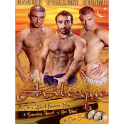 Arabesque 2-DVD-Set (Raging Stallion) (02291D)