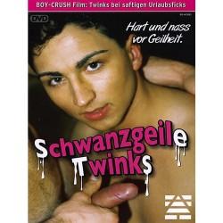 Schwanzgeile Twinks DVD (Foerster Media) (15604D)