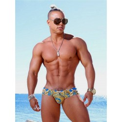 Danny Miami Lord Sky Dkini Brief Swimwear Multi (with inside gold foil print!) (T5764)