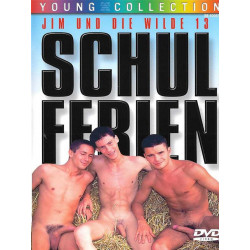 Schulferien DVD (Foerster Media) (15653D)