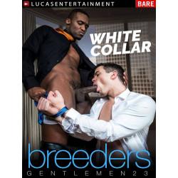 Gentlemen #23: White Collar Breeders DVD (LucasEntertainment) (16756D)