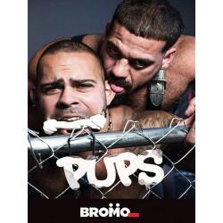 Pups DVD (Bromo)