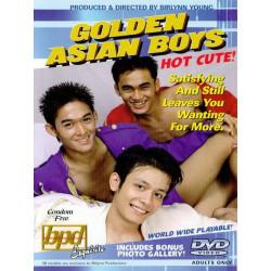 Golden Asian Boys DVD (Birlynn Young) (01922D)