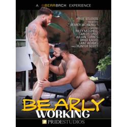 Bearly Working DVD (Pride Studios) (18710D)