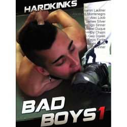 Bad Boys #1 DVD (Hard Kinks) (18749D)