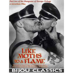 Like Moths To A Flame DVD (Bijou) (19374D)