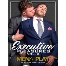 Executive Pleasures Vol. #2 DVD (Men At Play) (19139D)
