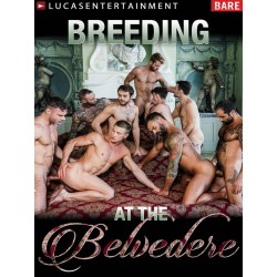 Breeding at The Belvedere DVD (LucasEntertainment) (19419D)