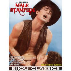 Male Stampede DVD (Bijou) (20084D)