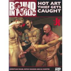 Hot Art Thief Gets Caught DVD (Bound In Public) (20494D)