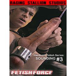Sounding #3 DVD (Raging Stallion) (04823D)