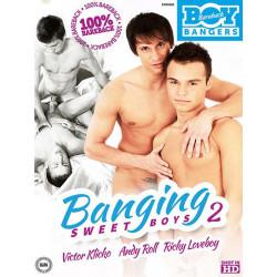 Banging Sweet Boys #2 DVD (13769D)