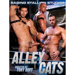 Alley Cats DVD (07477D)
