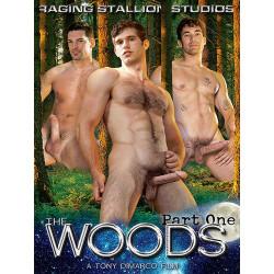 The Woods 1 DVD (Raging Stallion) (08477D)