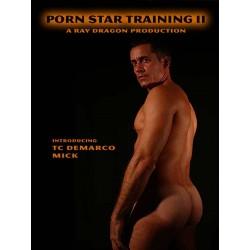 Porn Stars Jobs