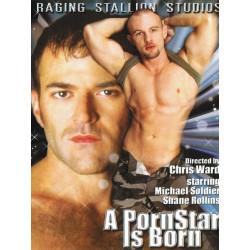 A Pornstar is Born DVD (05104D)