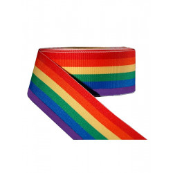 Rainbow Stripe Ribbon 1 1/2inch / 38mm wide 10m (T1535)