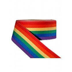 Rainbow Stripe Ribbon 3/8inch / 10mm wide 100m (T1536)