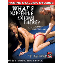 FistPack #23 - Whats Happening Down There DVD (05916D)