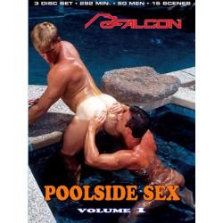 Poolside Sex Vol. 1 (FVS304) 3-DVD-Set (Falcon) (04488D)
