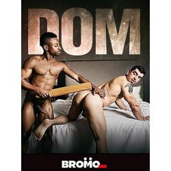 Dom DVD (Bromo) (15144D)