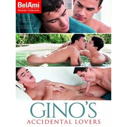 Gino's Accidental Lovers DVD (15248D)