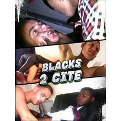 Blacks 2 Cite DVD (14679D)