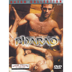 Raiders of the Lost Arse - Pharao DVD