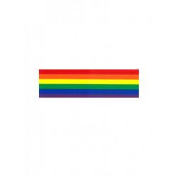 Rainbow Aufkleber / Sticker 4,50 x 25,4 cm / 2 x 10 inch (T5195)
